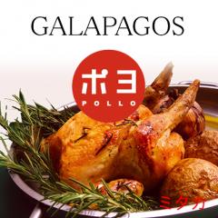 ガラパゴス ポヨ